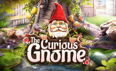 The Curious Gnome